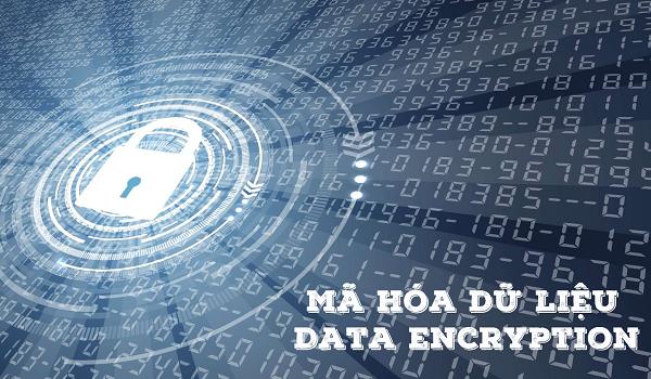 Mã hóa dữ liệu đang ngày càng phổ biến và phát triển.